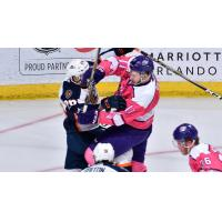 Greenville Swamp Rabbits clash with the Orlando Solar Bears