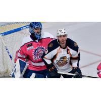 Greenville Swamp Rabbits forward Michael Pelech (right) against the Orlando Solar Bears