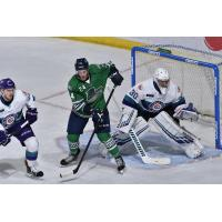 Florida Everblades right wing Philippe Hudon vs. the Orlando Solar Bears