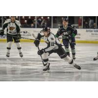 Utah Grizzlies forward Cole Ully vs. the Maine Mariners