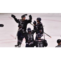Greenville Swamp Rabbits celebrate a goal against the South Carolina Stingrays