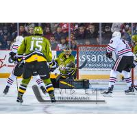 Niagara IceDogs pressure the North Bay Battalion