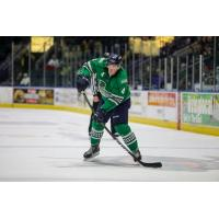 Florida Everblades defenseman Matt Finn
