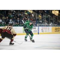 Florida Everblades defenseman Logan Roe vs. the Atlanta Gladiators