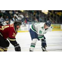 Florida Everblades forward Patrick Bajkov vs. the Atlanta Gladiators
