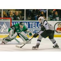 Ryan Olsen of the San Antonio Rampage beats Texas Stars goaltender Landon Bow for a shorthanded goal