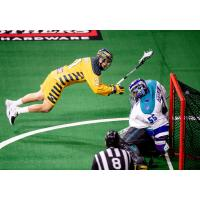 Brendan Bomberry of the Georgia Swarm dives to score a goal against the Rochester Knighthawks