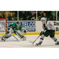 Texas Stars goaltender Landon Bow