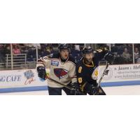 South Carolina Stingrays vs. the Norfolk Admirals