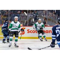 Texas Stars vs. the Manitoba Moose