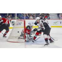 Evan Patrician of the Vancouver tests the Kelowna Rockets defence