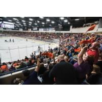 Flint Firebirds fans cheer on their team at the Dort Federal Credit Union Event Center