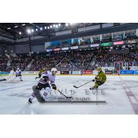 Niagara IceDogs vs. the North Bay Battalion