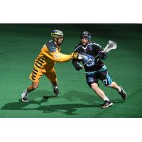 Ryan Benesch of the Rochester Knighthawks (right) against the Georgia Swarm