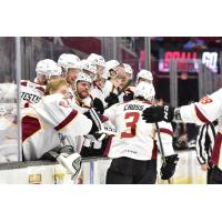 Tommy Cross receives congratulations from the Cleveland Monsters bench