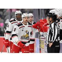 Grand Rapids Griffins exchange congratulations along the bench