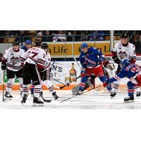 Kitchener Rangers defend against the Guelph Storm