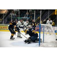 Norfolk Admirals goaltender Ty Reichenbach turns aside a Florida Everblades' shot