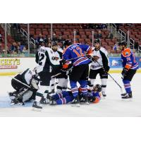 Utah Grizzlies mix it up with the Wichita Thunder