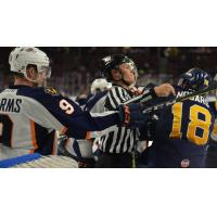 Greenville Swamp Rabbits battle the Norfolk Admirals