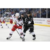 Grand Rapids Griffins defenseman Kevin Tansey (right) vs. the Ontario Reign