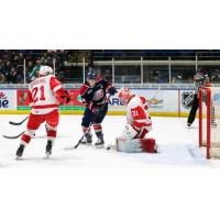 Soo Greyhounds defend against the Saginaw Spirit
