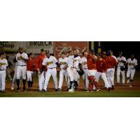 Burlington Bees celebrate a walk off win