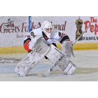 Goaltender Logan Thompson with the Adirondack Thunder