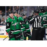 Texas Stars exchange high fives along the bench