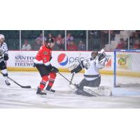 Adirondack Thunder forward Matt Salhany with a shot against the Manchester Monarchs