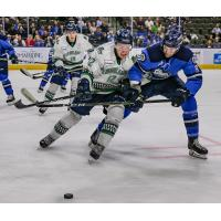 Florida Everblades defenseman Patrick McCarron (left) vs. the Jacksonville IceMen