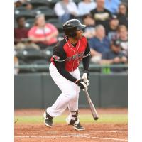 Hickory Crawdads at the plate