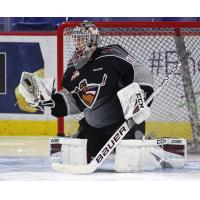 Vancouver Giants goaltender David Tendeck