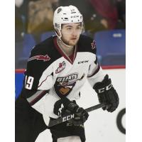 Vancouver Giants forward Dawson Holt