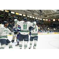 Florida Everblades celebrate against the Orlando Solar Bears