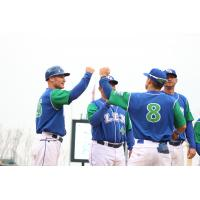 Lexington Legends manager Brooks Conrad delivers fist bumps