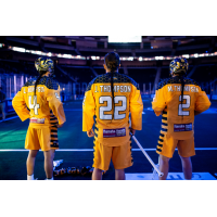 Lyle, Jerome and Miles Thompson of the Georgia Swarm
