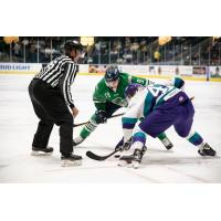 Florida Everblades forward Kyle Platzer faces off with the Orlando Solar Bears