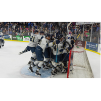 Sioux Falls Stampede celebrate a playoff series win against the Tri-City Storm