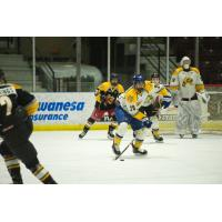 2019 Sarnia Sting second round selection Justin O'Donnell