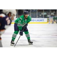 Florida Everblades defenseman Justin Wade