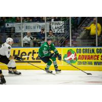 Florida Everblades forward Blake Winiecki vs. the Newfoundland Growlers