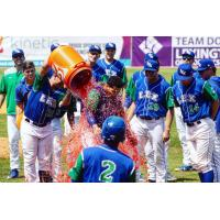 Lexington Legends celebrate a win