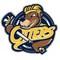 Erie Otters primary logo
