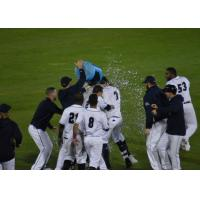 Somerset Patriots celebrate a walk-off win