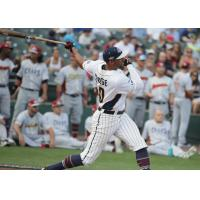 Somerset Patriots All-Star outfielder Michael Crouse