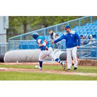 Eduard Pinto of the Ottawa Champions rounds the bases after his home run