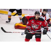Forward Nicolas Guay with the Drummondville Voltigeurs