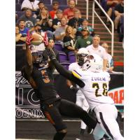 Anthony Amos of the Arizona Rattlers hauls in a catch vs. the Tucson Sugar Skulls