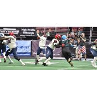 Washington Valor quarterback Arvell Nelson prepares to throw against the Philadelphia Soul